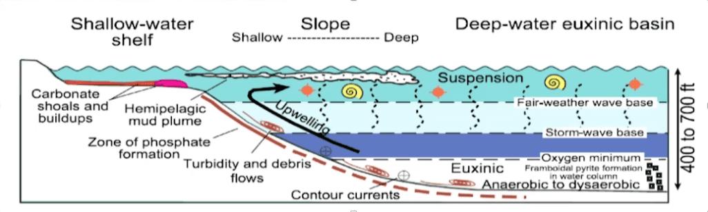 Figure 6: Organic matter deposit scheme in basins. Source: Loucks and Rupple 2007