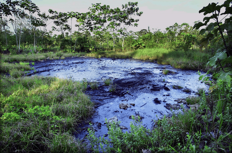 Lago Agrio condition – Source: Environmental Justice Atlas