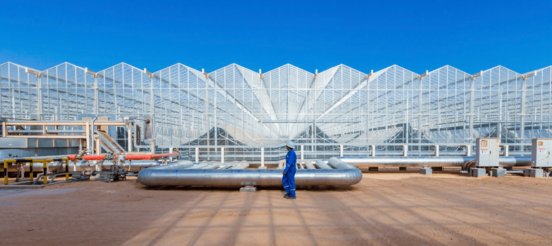 GlassPoint's enclosed trough technology. Photo courtesy of GlassPoint