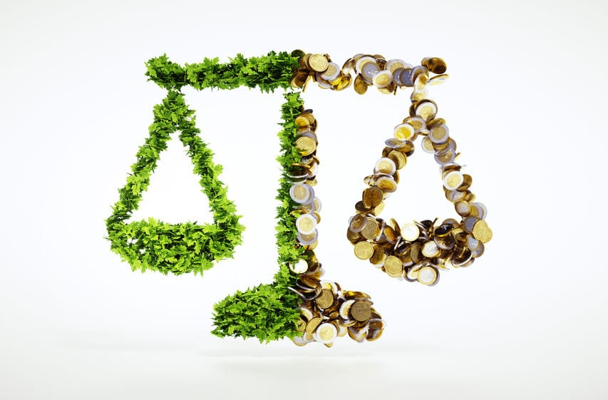 Democrat Party platform seeks environmental justice