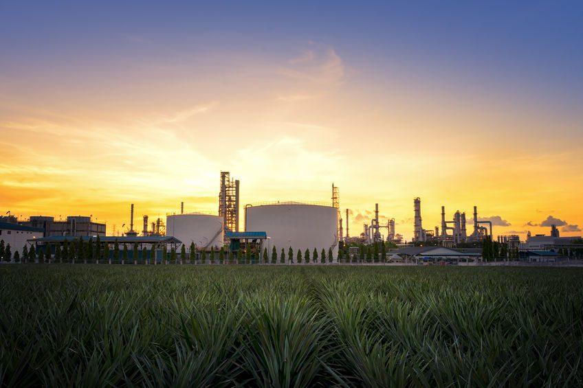 Reduced LNG demand due to economic slowdown has led to delays in FIDs