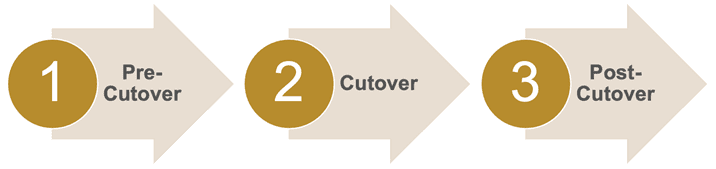 Organize The Cutover Activities Into Phases & Activity Groups
